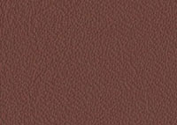Leather Chestnut Border 4007 Swatch thumb