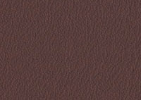Leather Chocolate Border 4010 Swatch thumb
