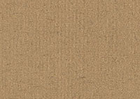 Faux Suede Nectar Border 5019 Swatch thumb