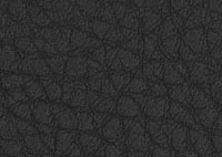 Faux Leather Ink Border 5520 Swatch thumb