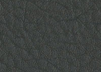 Faux Leather Graphite Border 5521 Swatch thumb