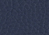 Faux Leather Ocean Border 5523 Swatch thumb