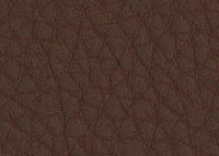 Faux Leather Expresso Border 5524 Swatch thumb