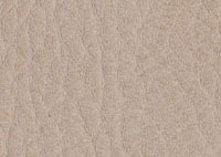 Faux Leather Greige Border 5528 Swatch thumb