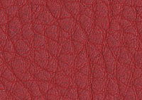 Faux Leather Flame Border 5530 Swatch thumb
