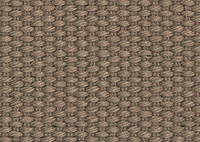 Anywhere Shale Border 6454 Swatch thumb