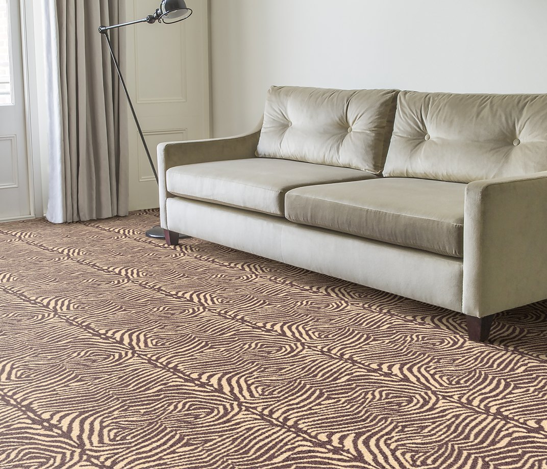 Quirky B Zebo Grey Carpet 7121 in Living Room