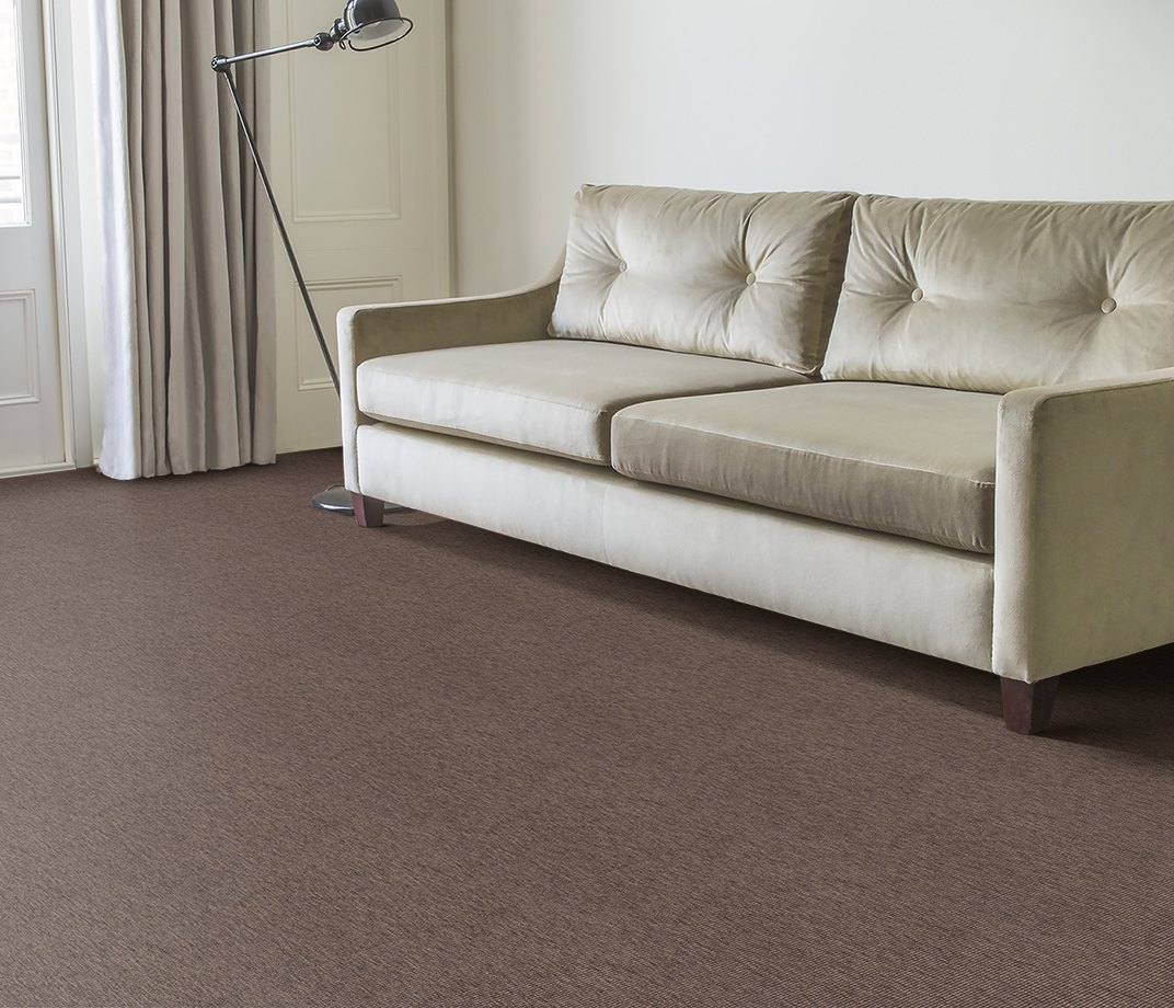 Anywhere Bouclé Cocoa Carpet 8002 in Living Room