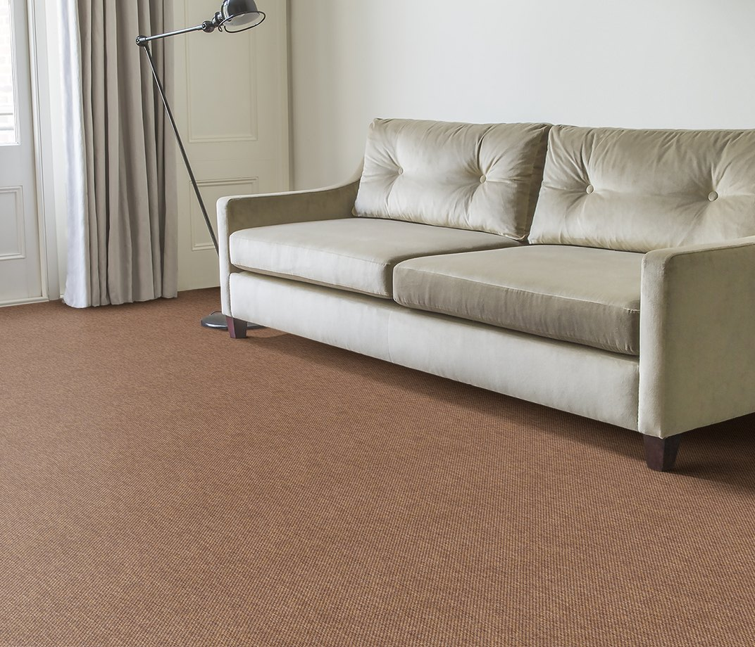Anywhere Panama Copper Carpet 8021 in Living Room