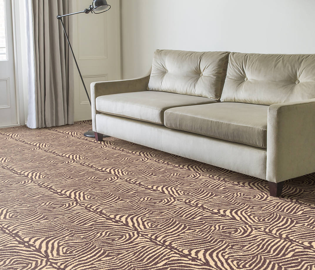 Quirky B Zebo Grey Carpet 7121 in Living Room thumb