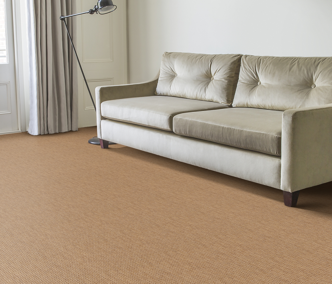 Anywhere Rope Natural Carpet 8060 in Living Room thumb