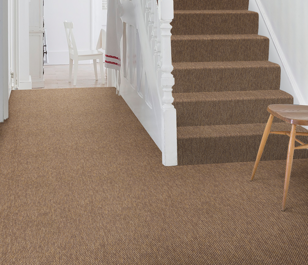 Anywhere Panama Copper Carpet 8021 on Stairs thumb