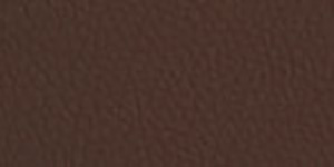 Faux Leather Borders Expresso 5524
