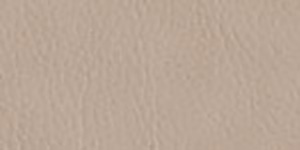 Faux Leather Borders Greige 5528