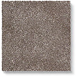 Luxx Velvet Fox Carpet 8071